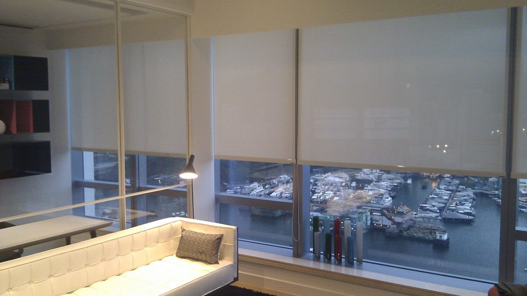 Roller Shades Deluxe Blind 煇煌簾 Hong Kong Windows